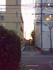 20090220.jpg