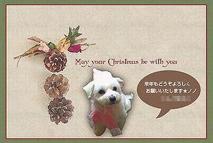 christmascard_20092.jpg